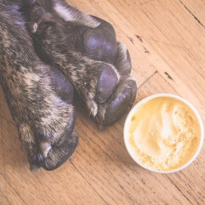 Uplift 'Bergamot' Paw Cream-Lightning Soft Paws