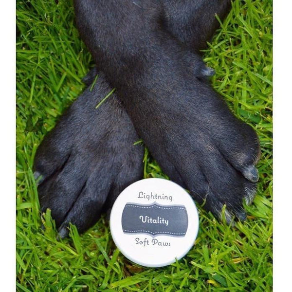Vitality 'Eucalyptus Lemon' Paw Cream-Lightning Soft Paws