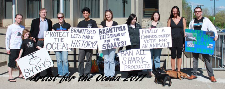 Interview With A Politician That Helped Start The Shark Fin Ban Movement In Canada