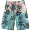 Shorts 28 - XS Palm Sunset Shorts PALM-SUNSET_WEEKEND-SHORT_28