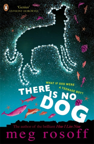 There Is No Dog - by Meg Rosoff