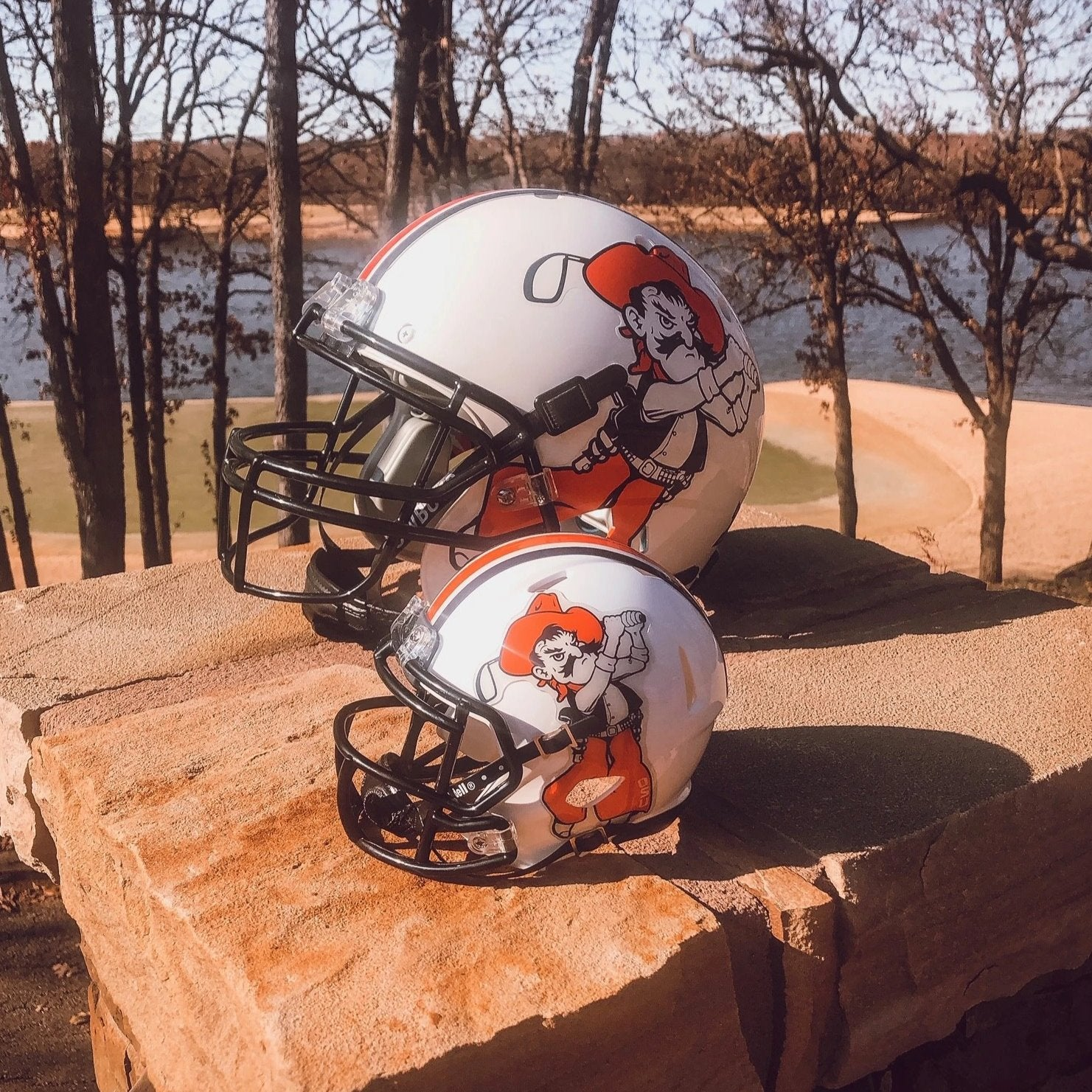 Riddell Swinging Pete Speed Mini Helmet