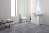 Porcelain Grey Tile