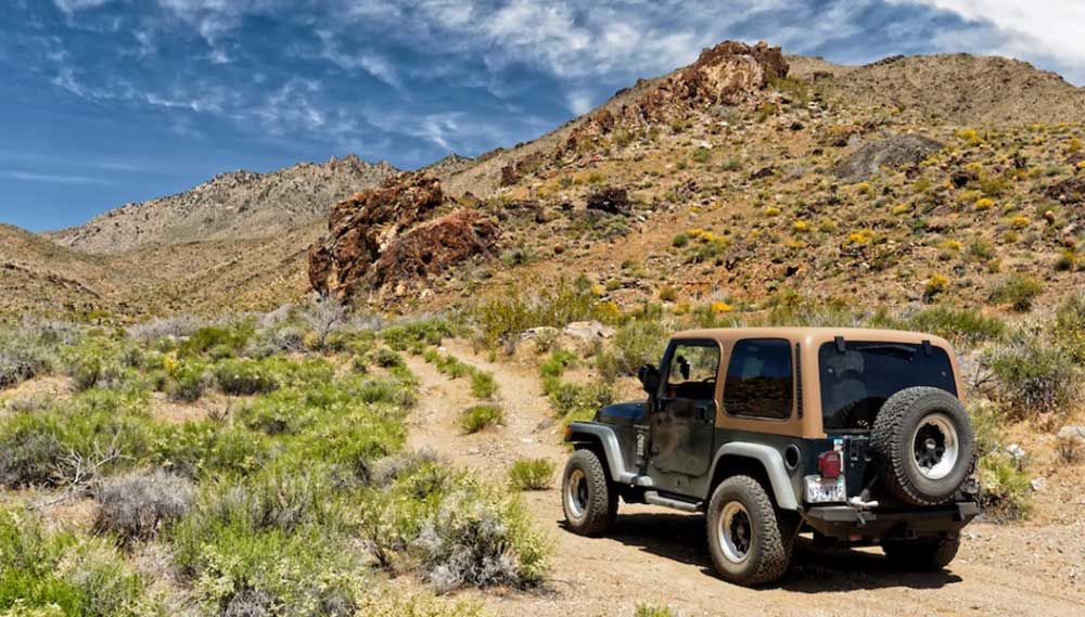 mojave national preserve jeep trail