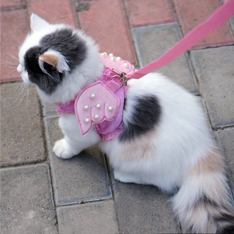 Heavenly Cat Harness Leash with Wings