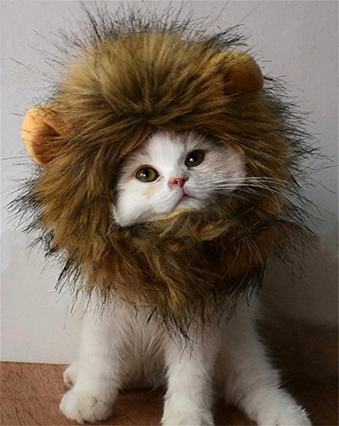 Lion Mane Cat Costume