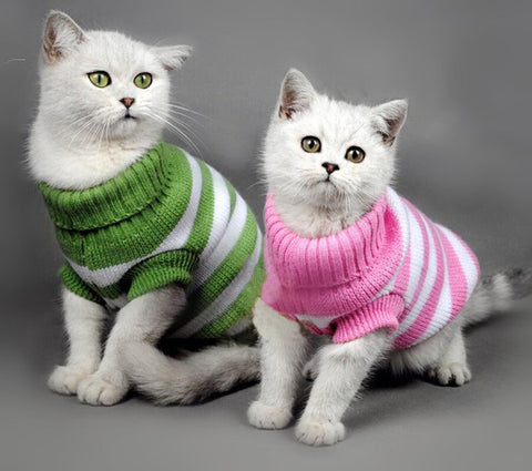 Charming Cat Sweaters (15 Styles!)