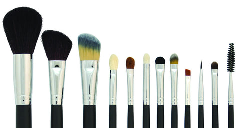 12 pc Brush Set