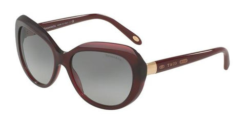 Tiffany TF4122 Sunglasses