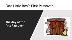 One Little Boy's First Passover