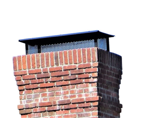 "Multi-Flue Chimney Caps - Black Powder Coated *Reversible* - 3/4"" Mesh"