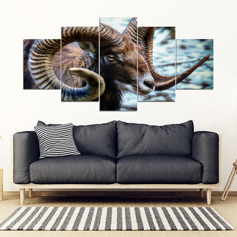 Antelope Framed Canvas