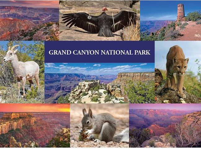 Grand Canyon National Park Sticker Postcard