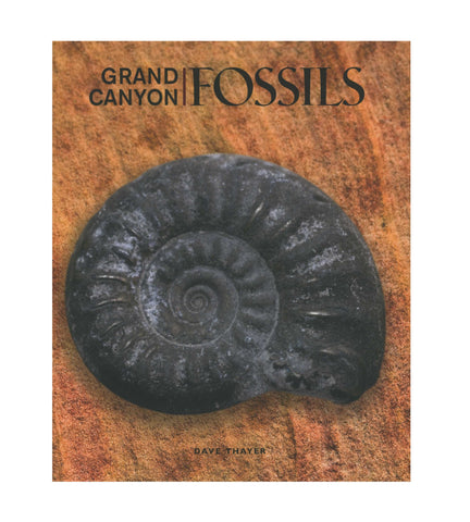 An Introduction to Grand Canyon Fossils
