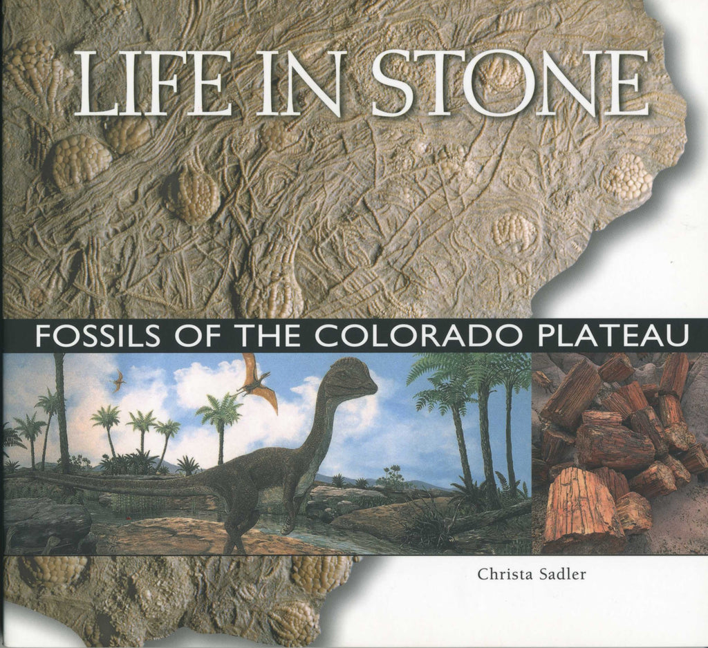 Life in Stone - Fossils of the Colorado Plateau