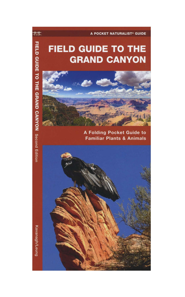 Pocket Field Guide to the Grand Canyon