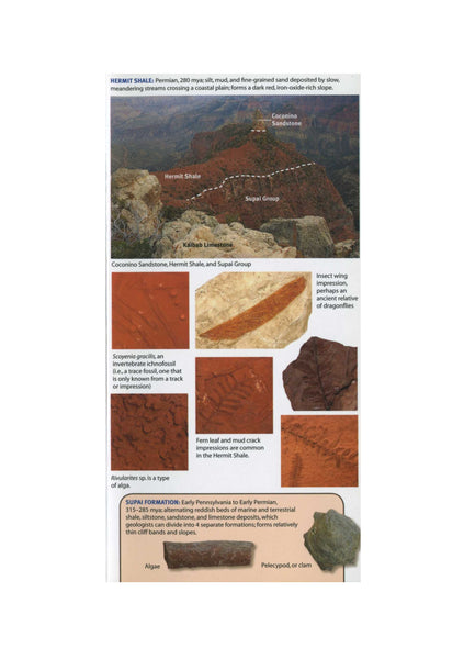 Mac's Pocket Guide: Grand Canyon Geology