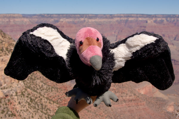 Plush California Condor