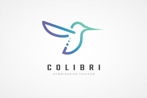 Flying Hummingbird Logo