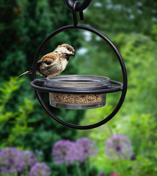 Monarch Abode Zazu Bird Feeder with Clear Bowl Monarch Abode