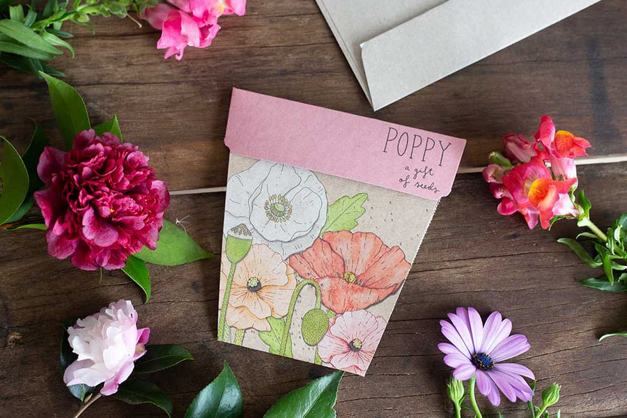 SOW N SOW - POPPY GIFT OF SEEDS