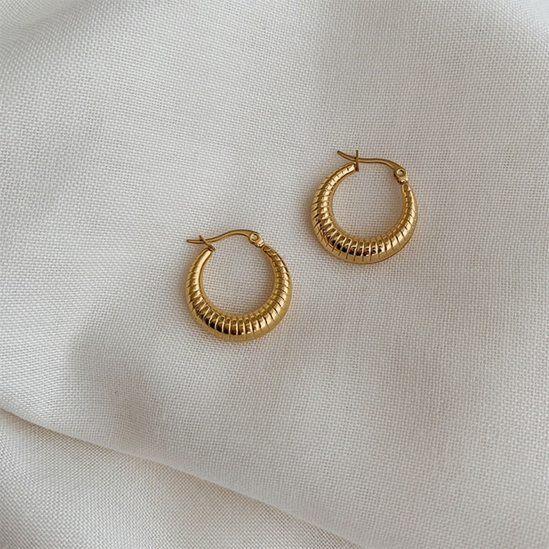Chic Small Hoop Earrings