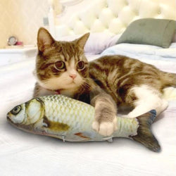 3D Fish Chew & Scratch Cat Toy