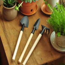 Mini Rake & Shovel Garden Tools (3 pcs) Set