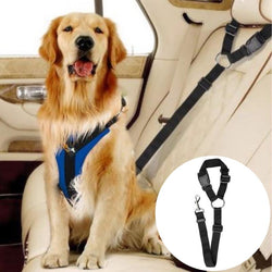 Multi-functional Pet Safety Car Leash