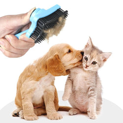 Push Plate Pet Brush