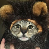 Lion Head Cat Headdress