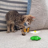 Chase The Butterfly Cat Toy