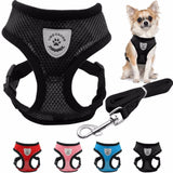 Breathable Mesh Pet Harness and Leash Set for Small Dogs
