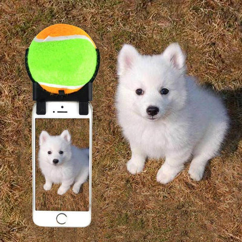 Clip-on Dog Selfie Stick