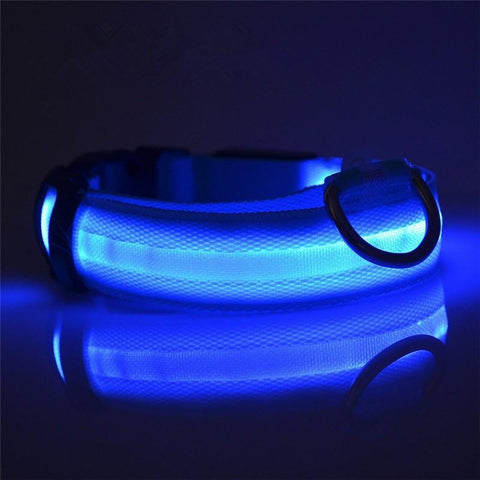 Night Safety LED Dog Collar Pet Gear BragGear.com Blue S