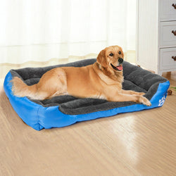 Candy Color Pet Bed