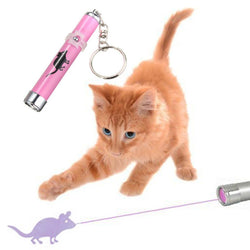 Laser Pointer Toy for Cats