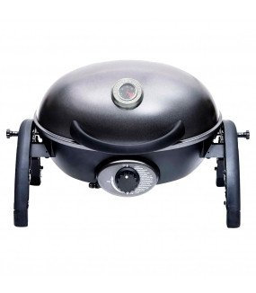 Portable Grill with Folding Cart