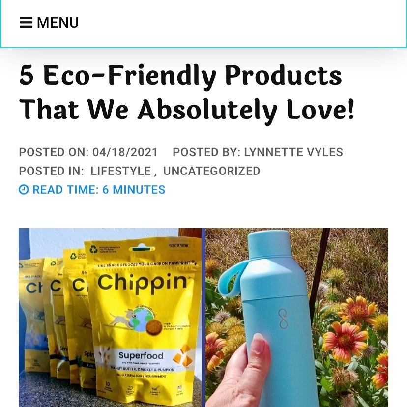 5 Eco-Friendly Products That We Absolutely Love! - lifewithoutaroadmap
