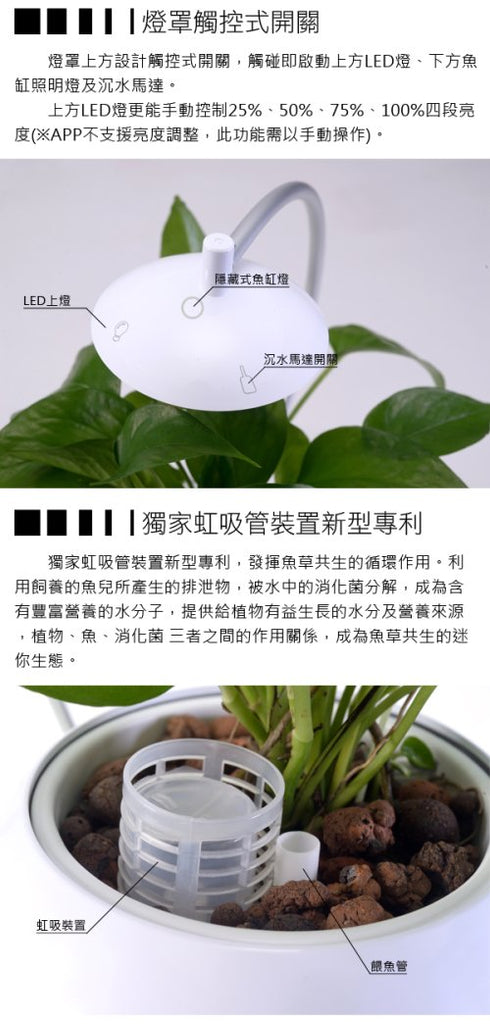 Herb&Fish Fight Connect 香草與魚 智能版套裝|anlander.com