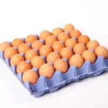 MAGNUM EGG TRAY 30'S