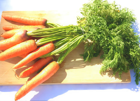 Organic Carrot Bunch
