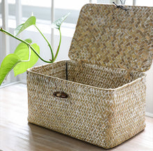 Willow Wicker Gift Box Plant Pot Case Succulent Container Flower Planter White