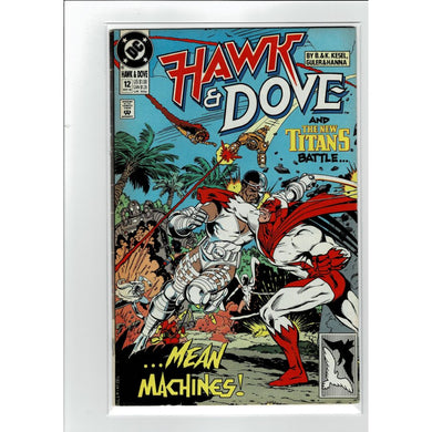 Hawk & Dove #12 And The New Titans Battle DC Comics Book