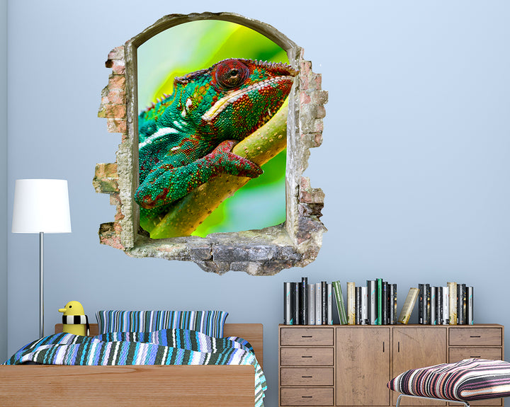 Chameleon Reptile Jungle Boys Bedroom Decal Vinyl Wall Sticker F096