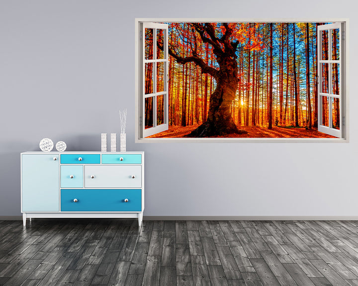 Sun Forest Trees Colourful Hall Decal Vinyl Wall Sticker I181