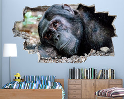 Gorilla Monkey Animal Boys Bedroom Decal Vinyl Wall Sticker R512