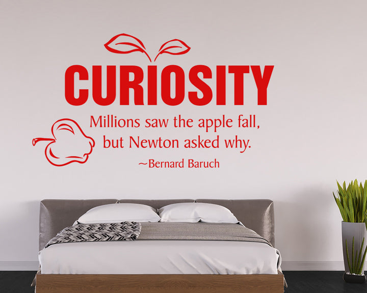 Curiosity Decal Vinyl Wall Sticker