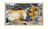 Cool Tiger Animal 3D 5mm Hardboard Bedroom Decal Vinyl Wall Sticker