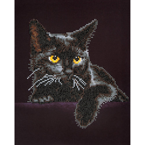 "Diamond Dotz Diamond Embroidery Facet Art Kit 13.75""X17"""